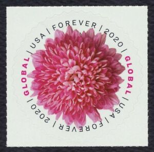 #5460 Global Forever: Chrysanthemum, Mint **ANY 4=FREE SHIPPING**