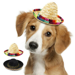 Small Dog Pet Gift Fun Straw Hat with Colorful Trim Beach Party Hawaii Style