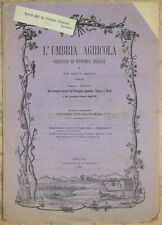 L'UMBRIA AGRICOLA 30 OTTOBRE 1885 FOLGINO FRUTTICOLTURA VINO TABACCO WINE WINE