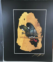 RED TAILED BLACK COCKATOO - Signed By Artist - BARKART PRINT