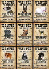 Beware Of The Dog Signs Wanted Various Breeds Set D