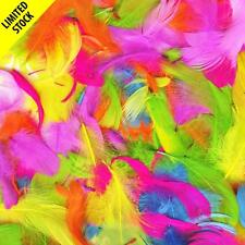 20 g Sac De Assortiment Brillant Coloré plumes fluo Craft Project chapeau bandeau