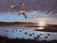 2015 Arkansas Ducks Unlimited Sponsor Print Signed AP Humphrey Farm Pintails