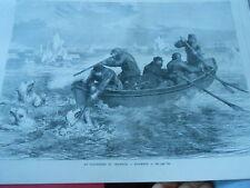 Gravure 1880 - Le Calendrier du Chasseur décembre chasse ours blanc