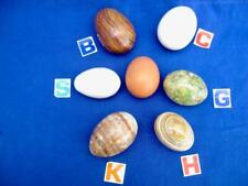 Alabaster marble onyx agate mineral stone eggs  Buy 1 get 1 free, so 2 for £9.95