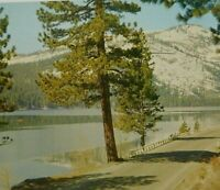 Vintage Donner Lake California, U.S. HWY 40 Donner Summit Mountain Boat Postcard