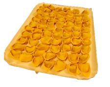 Cappellacci di Zucca 1 kg. di produzione Roversi - FATTI A MANO