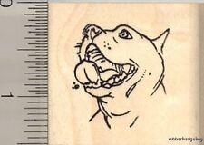 Pitbull dog face Rubber Stamp E11814 WM pit bull