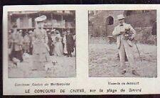 1905  --  concours de chiens  plage de dinard  m504