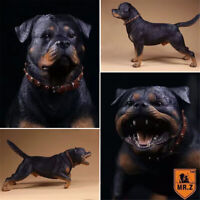 Mr.Z 1/6 Rottweiler Loyal Dog Pet Figure Animal Model Collector Decor Toys Gift