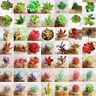 Artificial Succulents Plant Garden DIY Miniature Fake Cactus Home Floral Decor T
