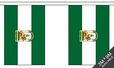 More details for andalusia bunting 9 metres 30 flags polyester flag andalucia