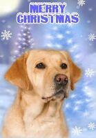 Labrador Retriever Dog A6 Christmas Card Design XLAB-11 by paws2print