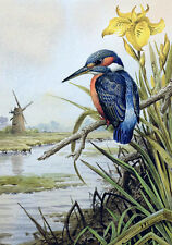 Large Oil painting nice bird sitting on branch flowers by river Hand painted