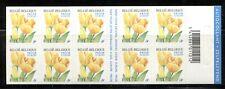 BELGIUM 2003, FLOWER: YELLOW TULIPS, Scott 1991 COMPLETE BOOKLET OF 10, MNH