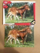 Wild horse 60pc Puzzle