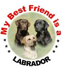 2 Labrador Car Stickers By Starprint