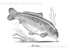 THE PARROT Official British Former Record Carp Art Print Legendary Famous Carp