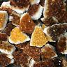 Medium CITRINE Geode Natural Crystal Display Specimen Druze Orange Brown Yellow