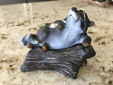 Big Sky Carvers Bearfoots Fishing Raccoon Kritter Hollow Trinket Box Figurine