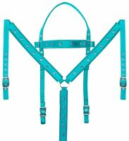 Used Western Bridle Headstall Reins Breastcollar Trail Teal Turquoise Horse Tack