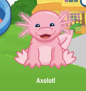 Webkinz Axolotl Virtual PET Adoption Code Only Messaged Webkinz Rare salamander!