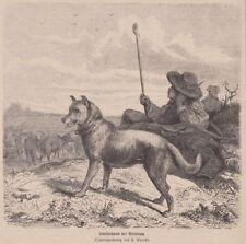Original-Holzschnitte (1800-1899) aus Hessen