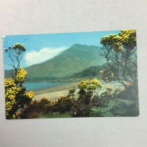Loch Buie and Ben Buie Isle of Mull Posted Postcard PT36370