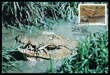 VENDA MK 1992 KROKODILE CROCODILE MAXIMUMKARTE CARTE MAXIMUM CARD MC CM cr21