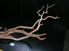 Manzanita Aquarium Wood Reptile, Bird, Arts & Crafts, Non-Treated S20