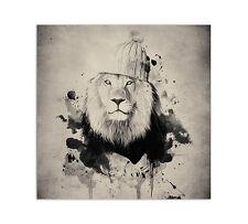 Leone con berretti SPLASH art. FIGO 60x60cm TELA BARELLA CARO ART