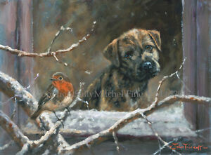 Border Terrier Dog with Robin,Christmas cards pack of 10 by J Trickett C504X
