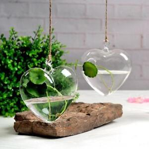 Hanging Clear Glass Vase Heart Shaped Creative Hydroponic Crystal Decoration New