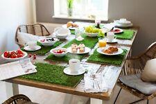 Tisch Set Tischläufer Kunstrasen Untersetzer Platzset Grün Rasen EM Fußball