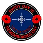 NATO Remembrance Day Inside Car Window Clear Cling Sticker