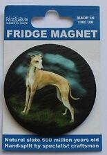Greyhound - Dog - Fridge Magnet - Welsh Slate