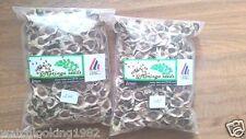 300 Organic Moringa Oleifera Seeds