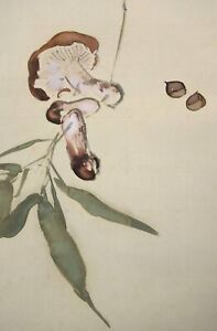 HANGING SCROLL JAPANESE PAINTING JAPAN Mushroom Old Art Antique e614