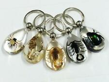 15 pcs real spider gold&black scorpion green beetle dragon mix insect keychain