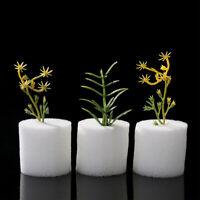 100Pcs Soilless Hydroponic Seed Nursery Plant Pot Sponge Cultivation Tray Novelt