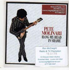 (GE208) Pete Molinari, Hang My Head In Shame - 2014 DJ CD
