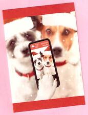 Jack Russell Terrier Santa Hats Selfie Christmas Cards Box 14