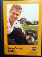2005 AFL AUSKICK PEDIGREE PORT POWER KANE CORNES AND BOS CARD
