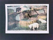 Animals Animals Polar Bear Polar Bear Ours Blanc-Very Old Collectible Figure c58.