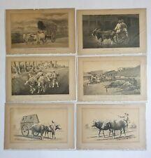 6pc x Lithographs CEYLON COW BULLOCK CARTS  - c1888  Julius Bien 9in x 6in (1)