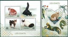 Cats Pets Animals Fauna Madagascar MNH stamp set ODD SHAPE