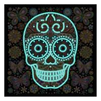 DIY 5D Luminous Special Shape Glow Diamond Painting Stitch Skull Home Decor