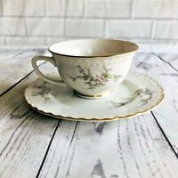 Embassy U.S.A. Vitrified China set Cup and Saucer