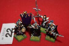 Juegos taller Warhammer elfos oscuros guardia negra de Naggarond comando Pintado fuera de imprenta