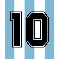 Maradona 10. Argentina Home football shirt 1990 - 1991 FLOCK NUMBER PRINT